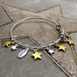 Hultquist Jewellery Bi Colour Star Bangle