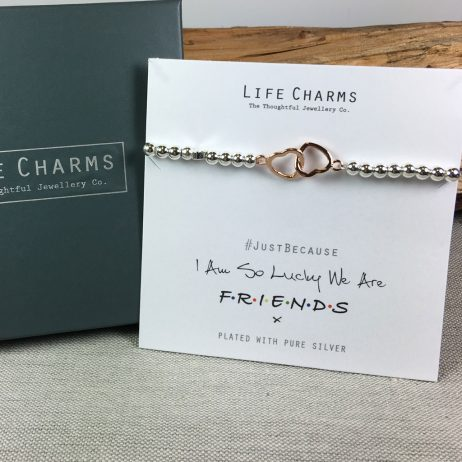 Life Charms We Are Friends Silver Bracelet