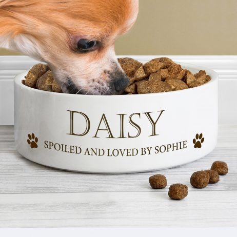 Personalised Paws Any Name and Message Medium White Pet Bowl - Dog or Cat 14cm